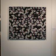 gallery_duplex_natura_dz-11